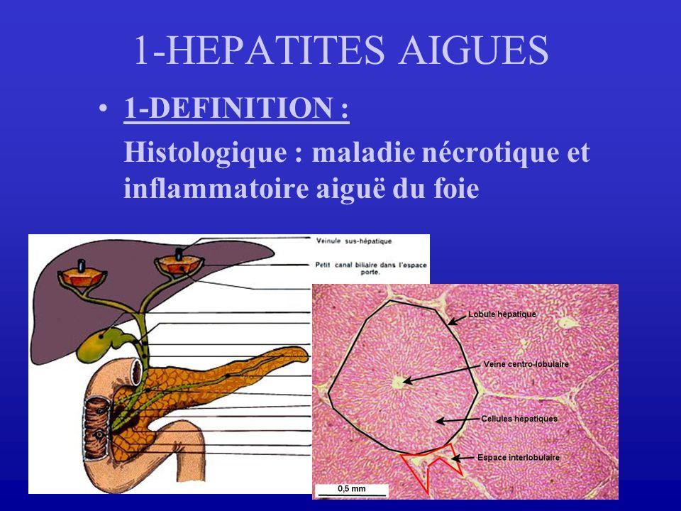 1-HEPATITES AIGUES 1-DEFINITION :