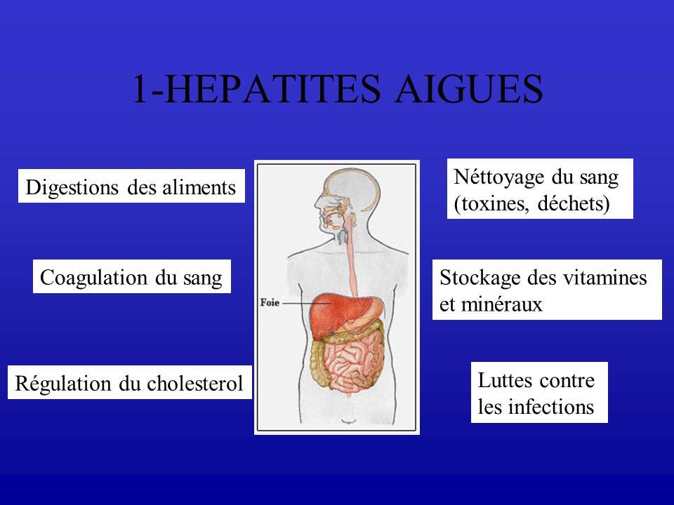 1-HEPATITES AIGUES Néttoyage du sang (toxines, déchets)