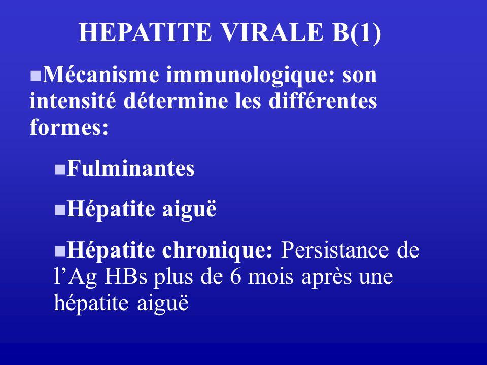 HEPATITE VIRALE B(1) Mécanisme immunologique: son intensité détermine les différentes formes: Fulminantes.