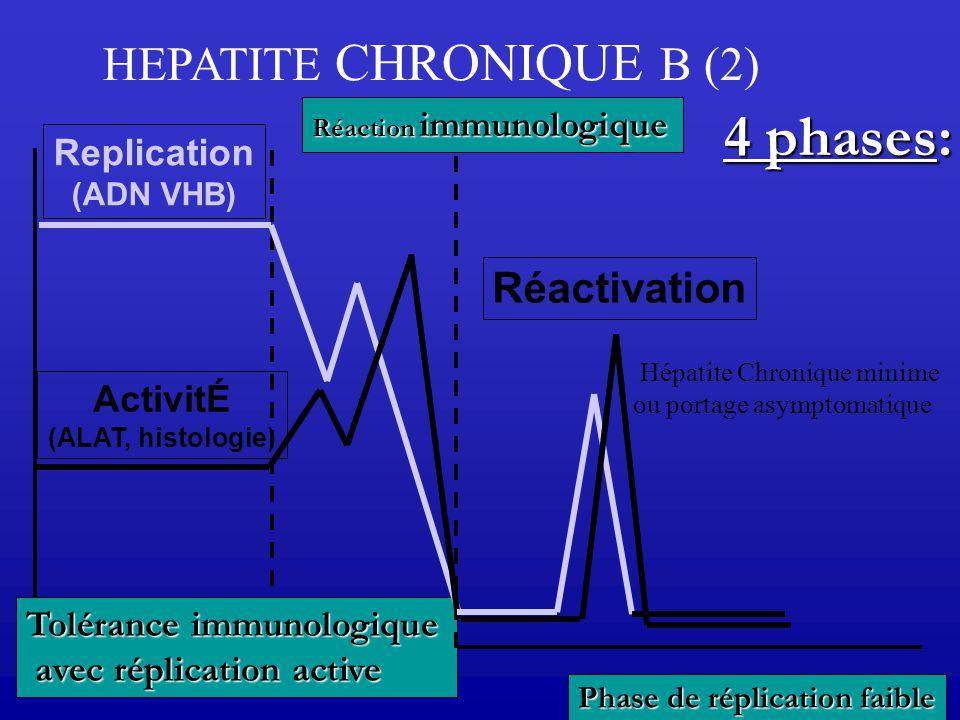 HEPATITE CHRONIQUE B (2)