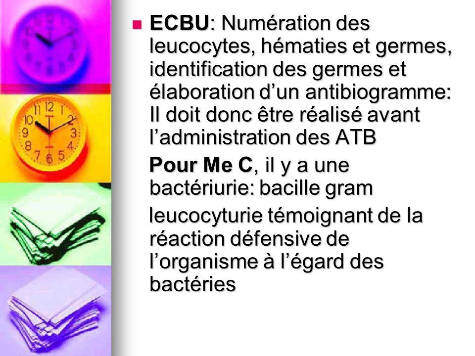 ECBU: Numération des leucocytes, hématies et germes, identification des germes et élaboration d'un antibiogramme: Il doit donc être réalisé avant l'administration des ATB
