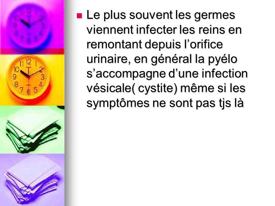 Le plus souvent les germes viennent infecter les reins en remontant depuis l'orifice urinaire, en général la pyélo s'accompagne d'une infection vésicale( cystite) même si les symptômes ne sont pas tjs là