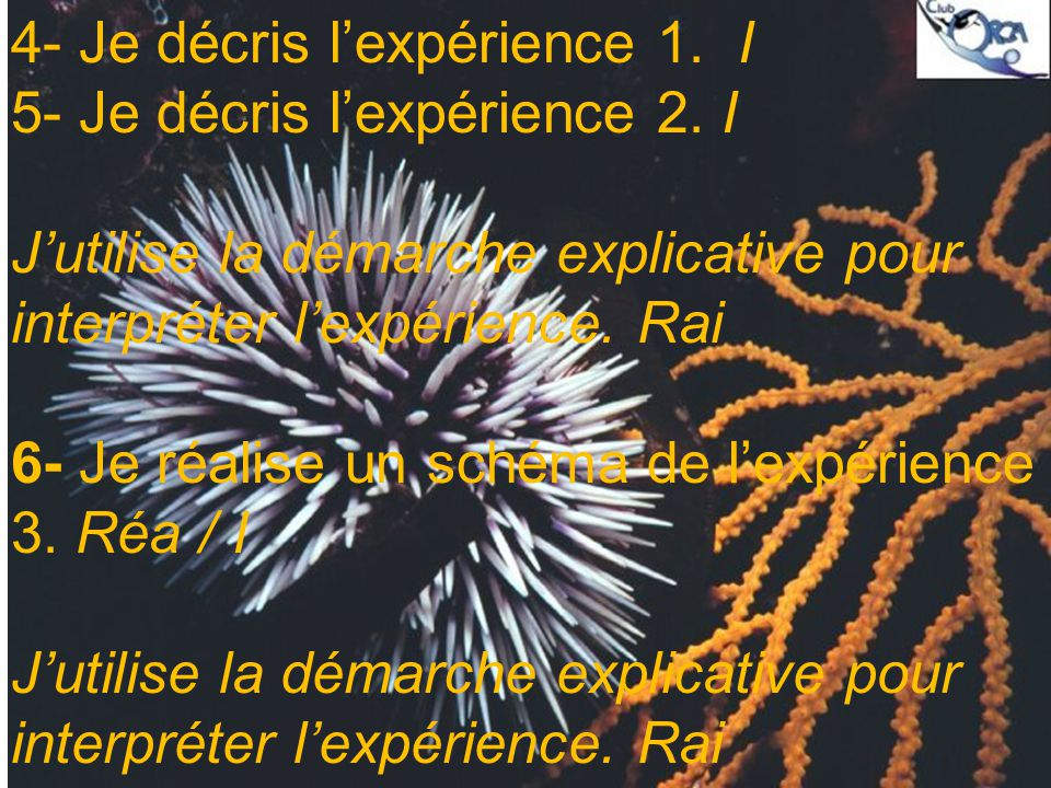 4- Je décris l'expérience 1. I