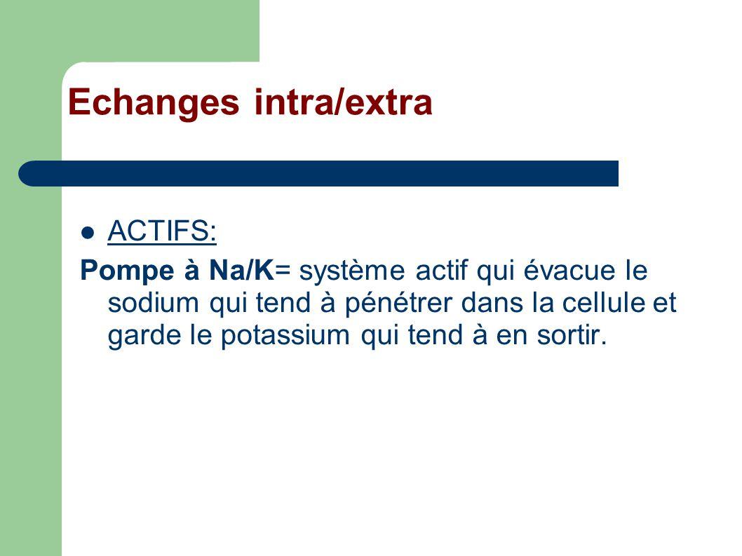Echanges intra/extra ACTIFS: