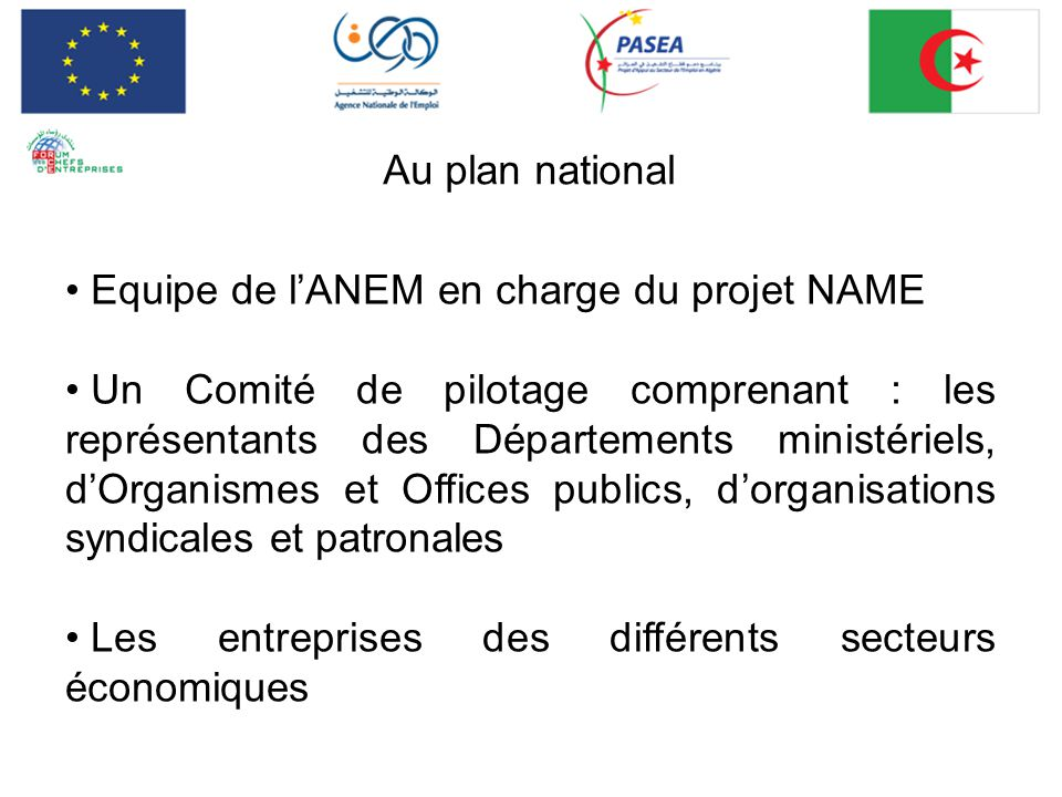 Au plan national Equipe de l'ANEM en charge du projet NAME