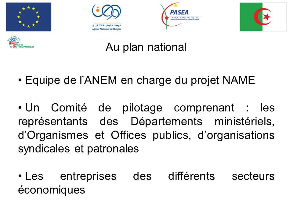 Au plan national Equipe de l'ANEM en charge du projet NAME