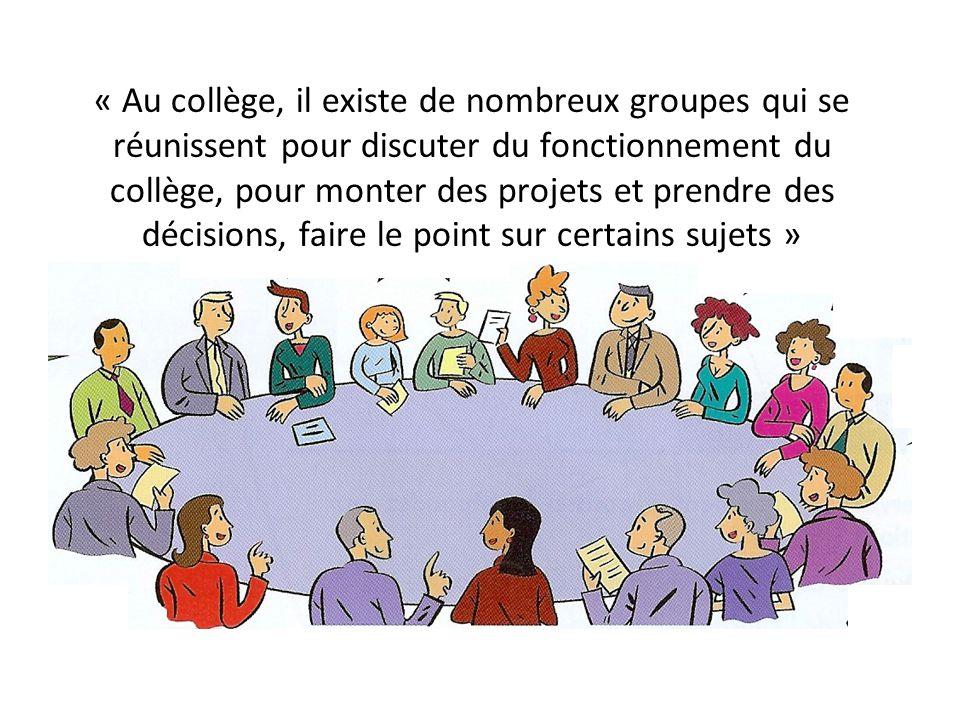 « Au collège, il existe de nombreux groupes qui se réunissent pour discuter du fonctionnement du collège, pour monter des projets et prendre des décisions, faire le point sur certains sujets »