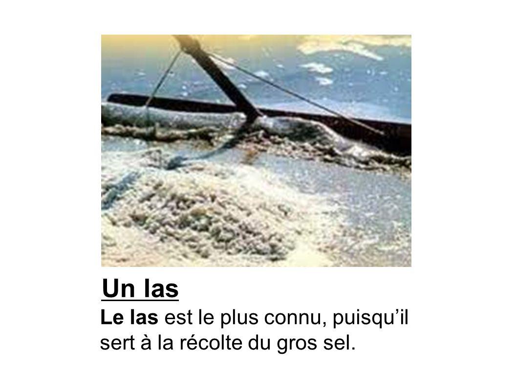 Un las Le las est le plus connu, puisqu'il sert à la récolte du gros sel.