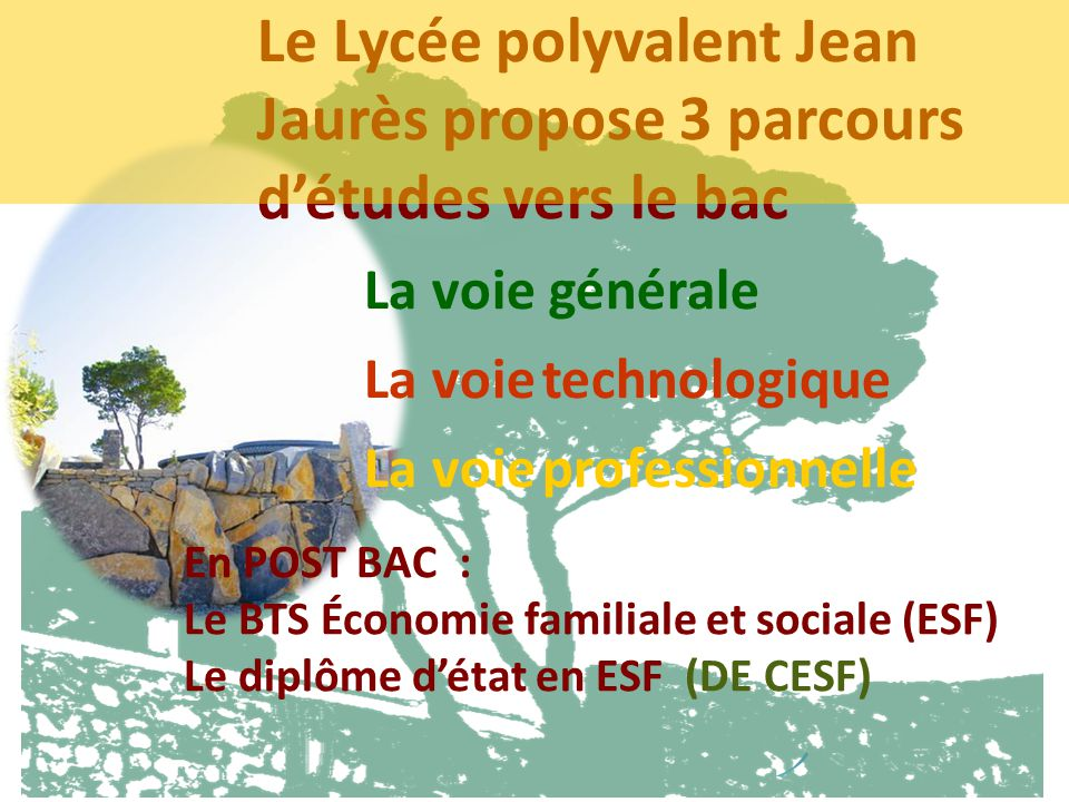Le Lycée polyvalent Jean Jaurès propose 3 parcours d'études vers le bac