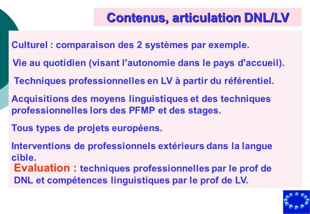 Contenus, articulation DNL/LV