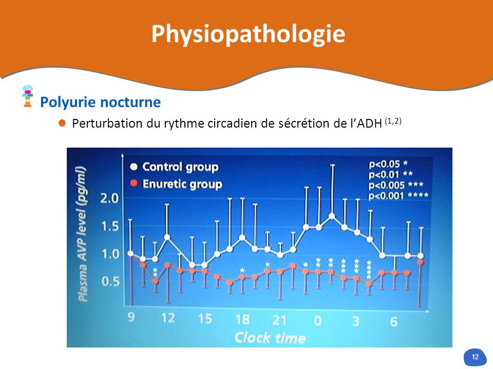 Physiopathologie Polyurie nocturne