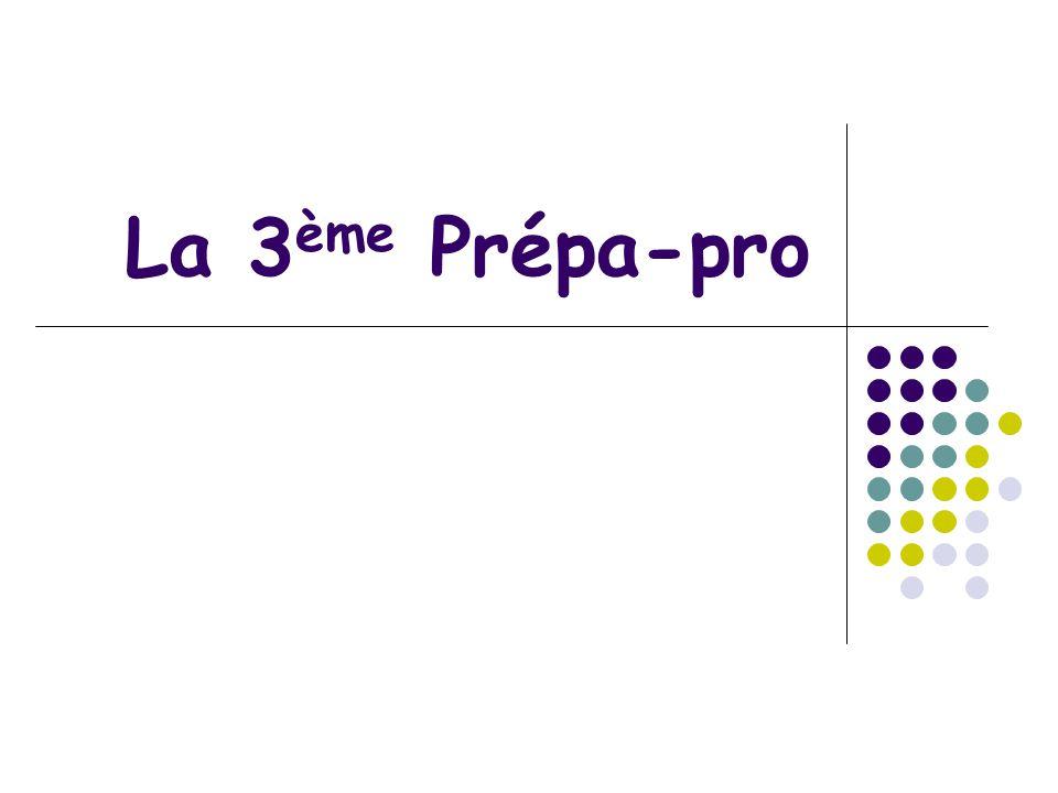 La 3ème Prépa-pro