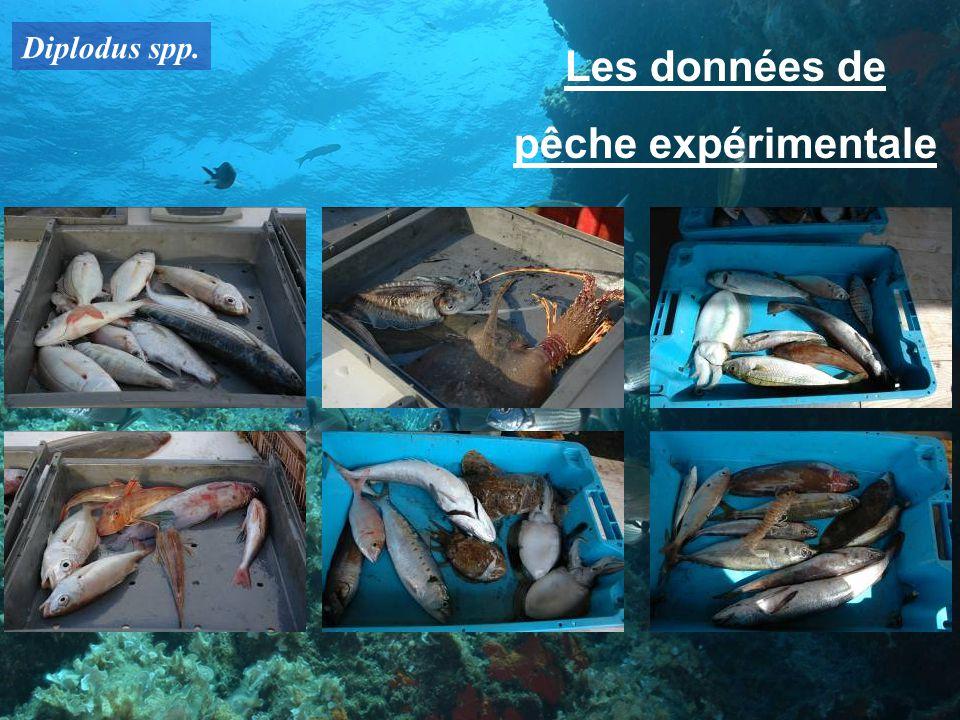 Les données de pêche expérimentale