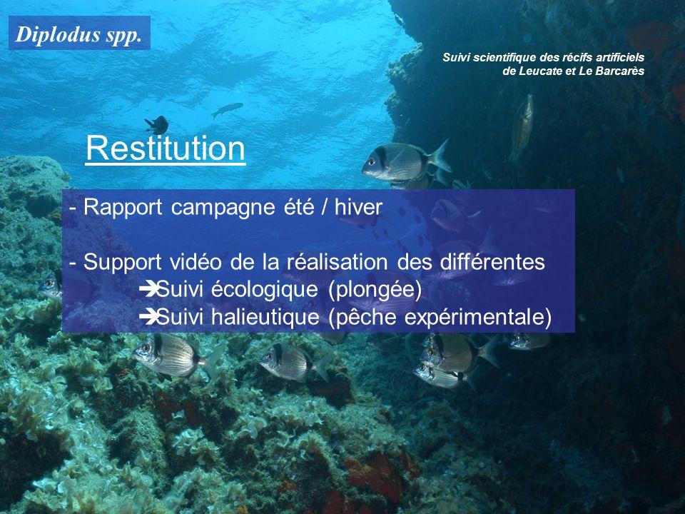 Suivi scientifique des récifs artificiels de Leucate et Le Barcarès