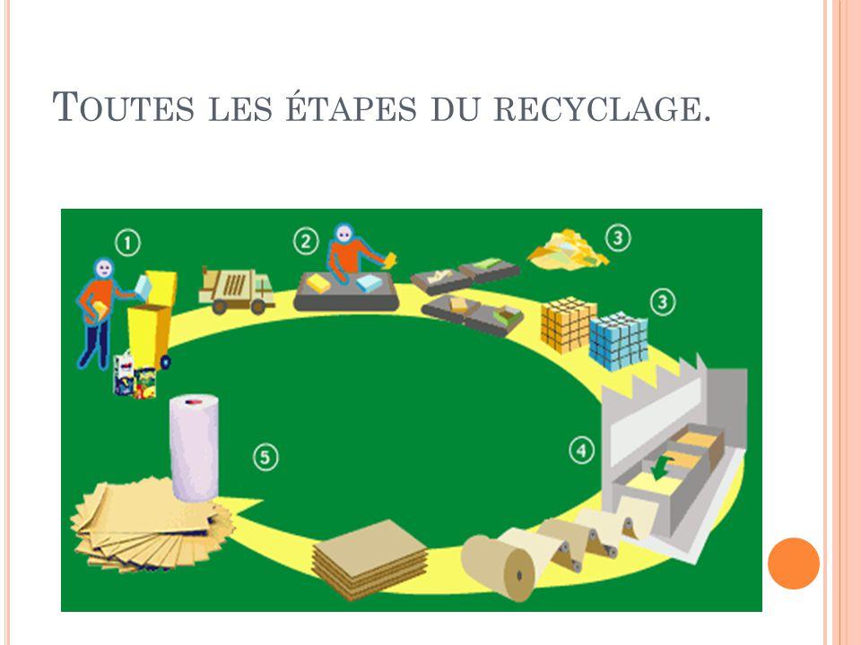 Toutes les étapes du recyclage.