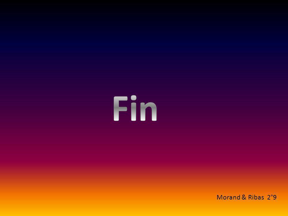 Fin Morand & Ribas 2°9