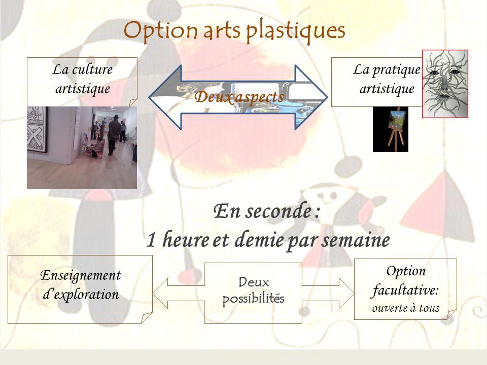 Option arts plastiques