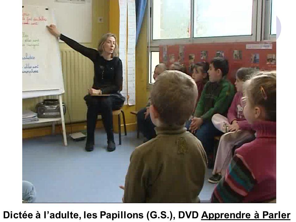 Dictée à l'adulte, les Papillons (G.S.), DVD Apprendre à Parler