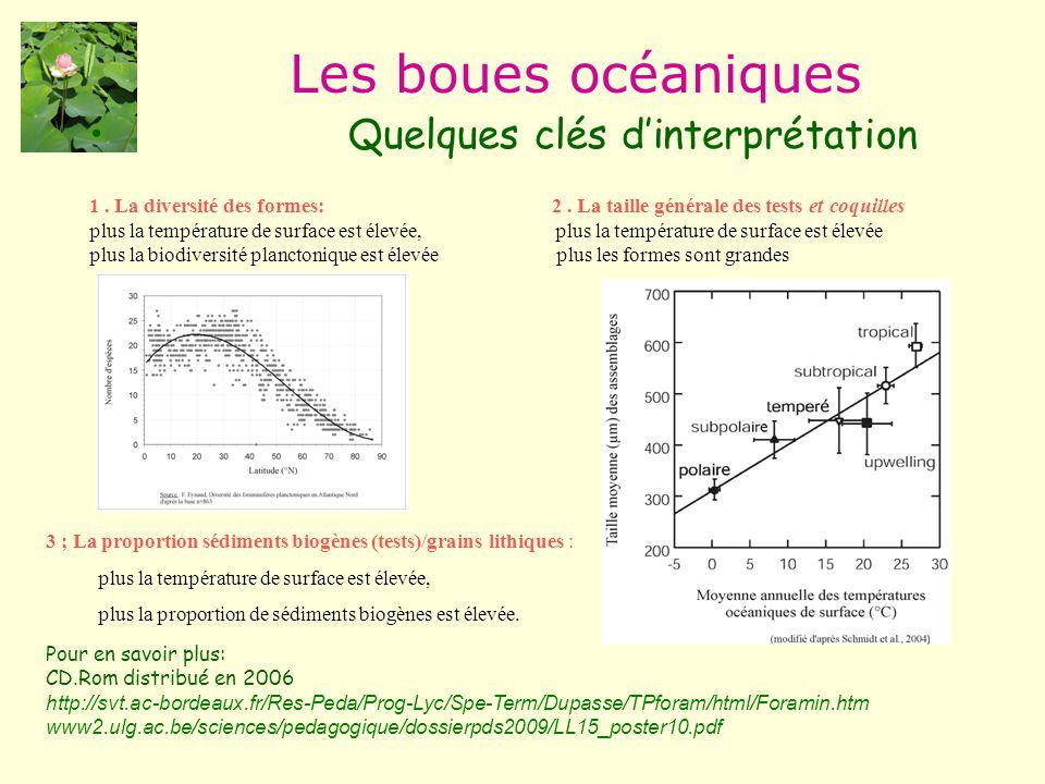 Les boues océaniques Quelques clés d'interprétation