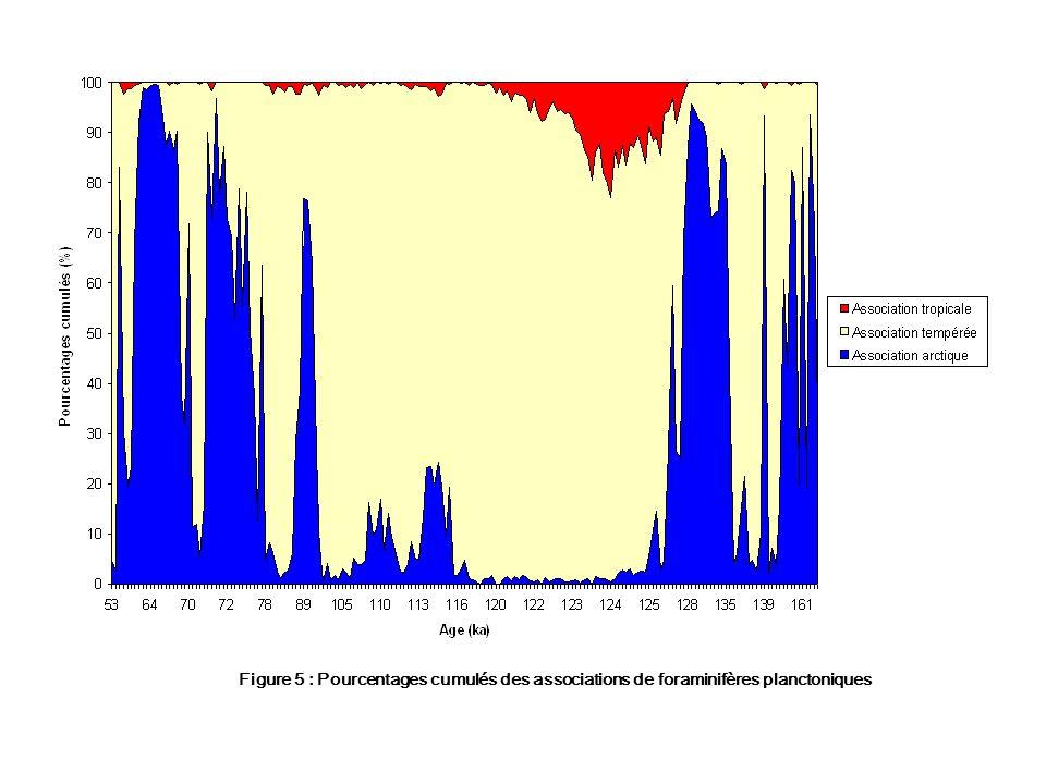 Figure 5 : Pourcentages cumulés des associations de foraminifères planctoniques