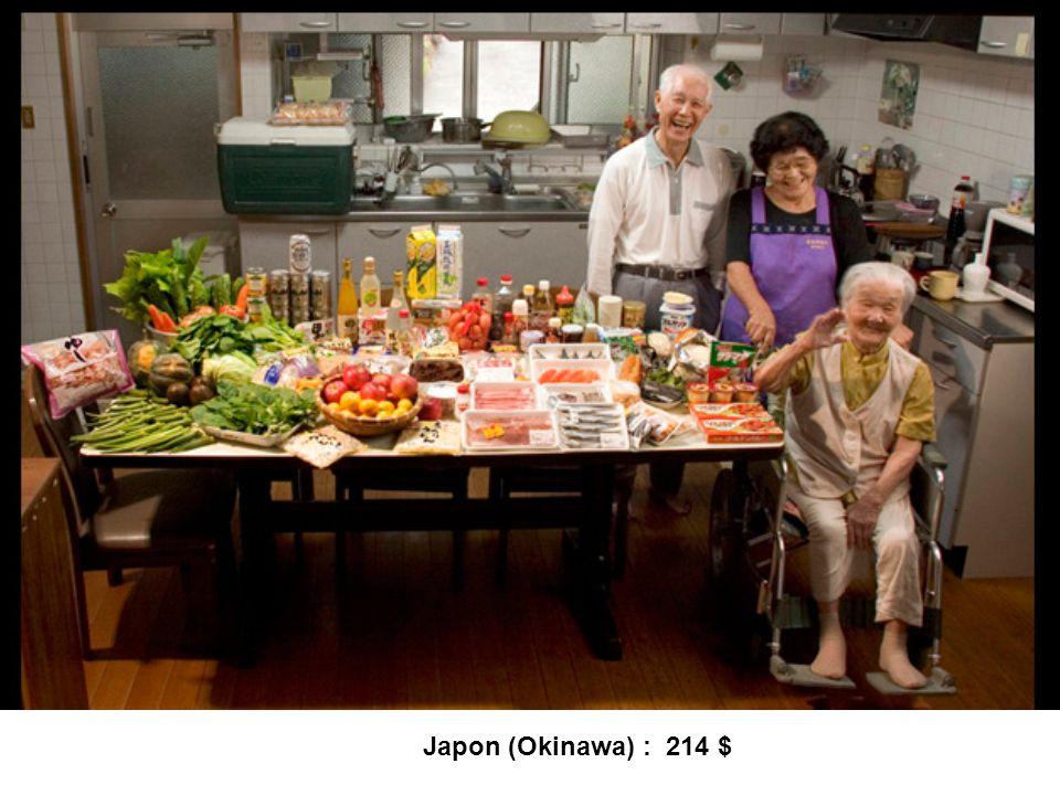 Japon (Okinawa) : 214 $