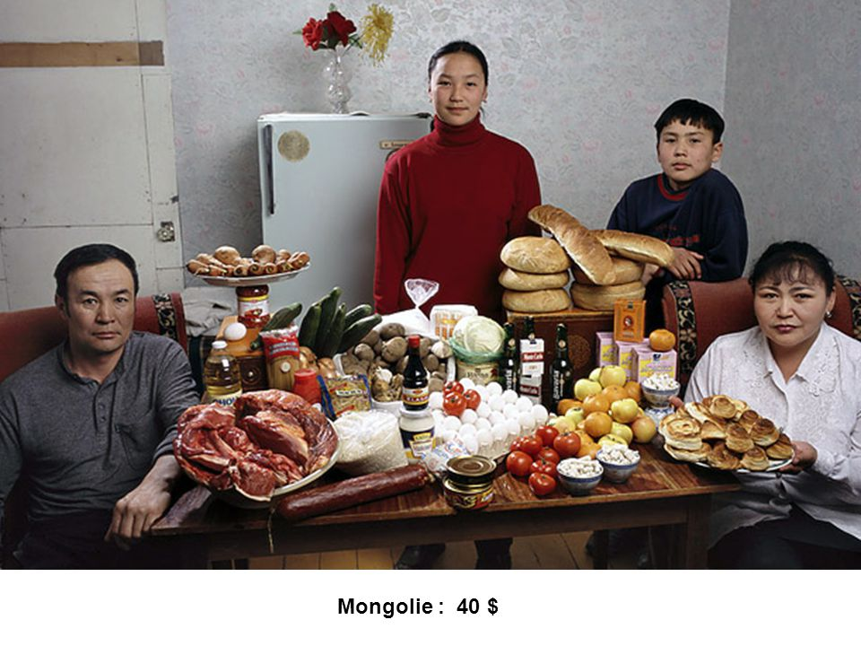 Mongolie : 40 $