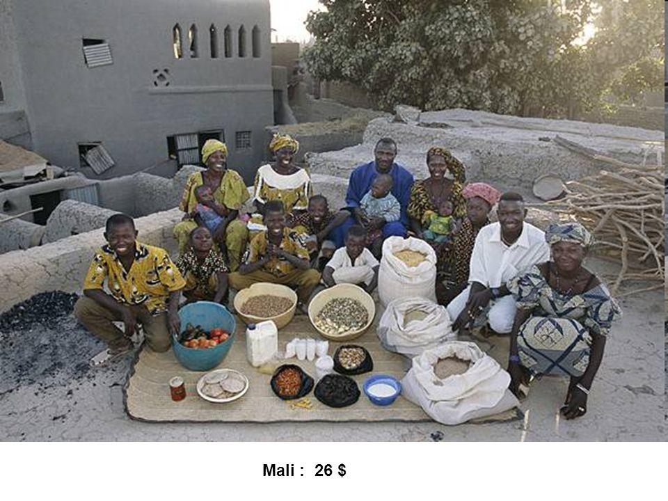 Mali : 26 $