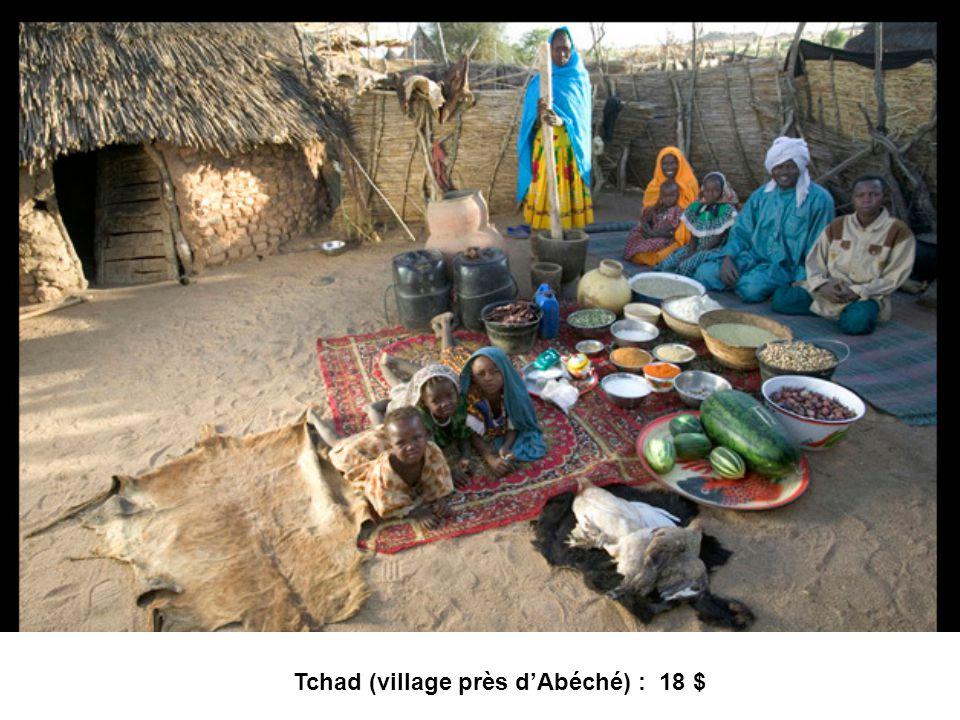Tchad (village près d'Abéché) : 18 $