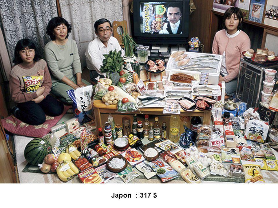 Japon : 317 $