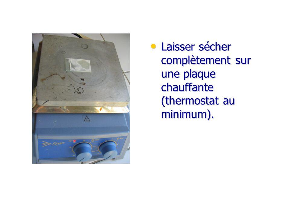 Laisser sécher complètement sur une plaque chauffante (thermostat au minimum).