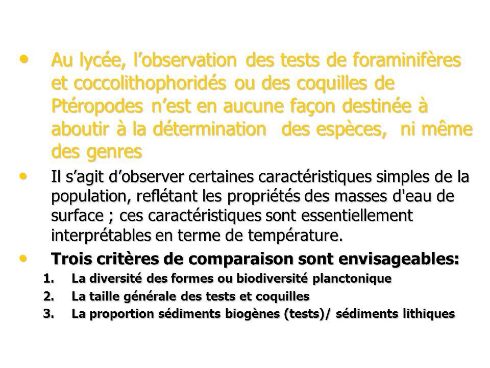 Au lycée, l'observation des tests de foraminifères et coccolithophoridés ou des coquilles de Ptéropodes n'est en aucune façon destinée à aboutir à la détermination des espèces, ni même des genres