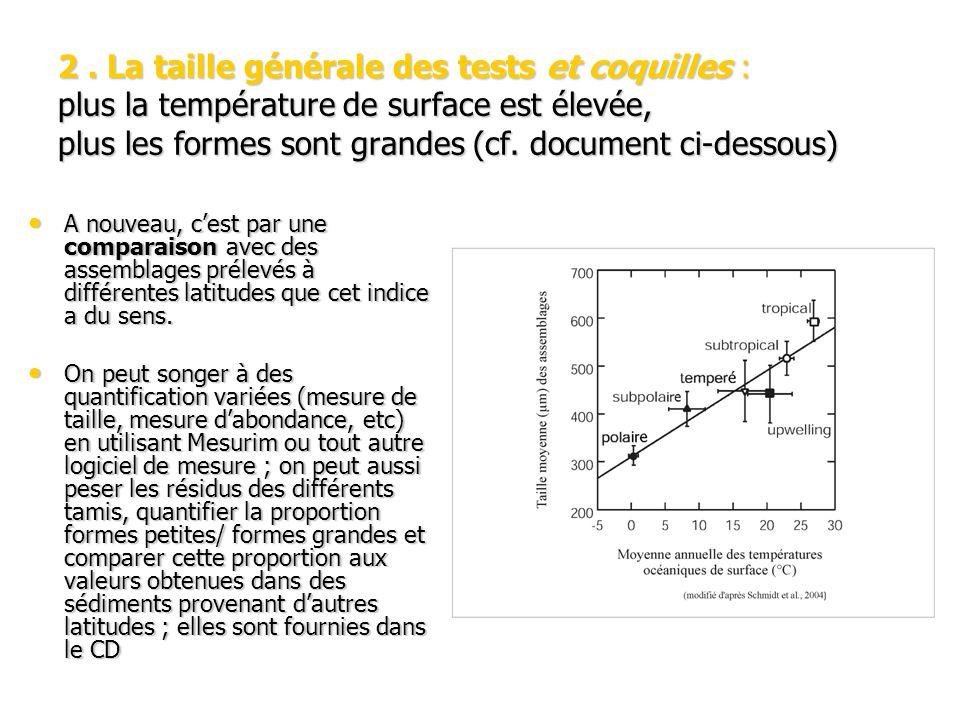 2 . La taille générale des tests et coquilles : plus la température de surface est élevée, plus les formes sont grandes (cf. document ci-dessous)