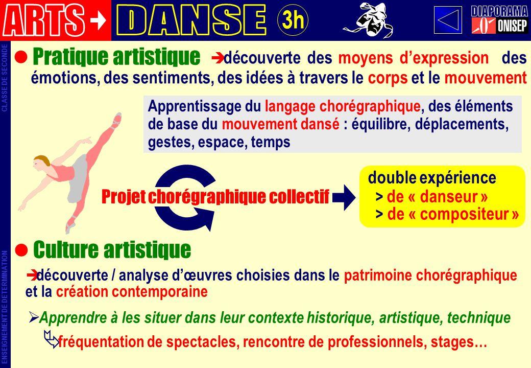 ARTS DANSE DIAPORAMA 3h Pratique artistique Culture artistique