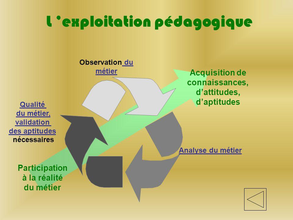 L 'exploitation pédagogique