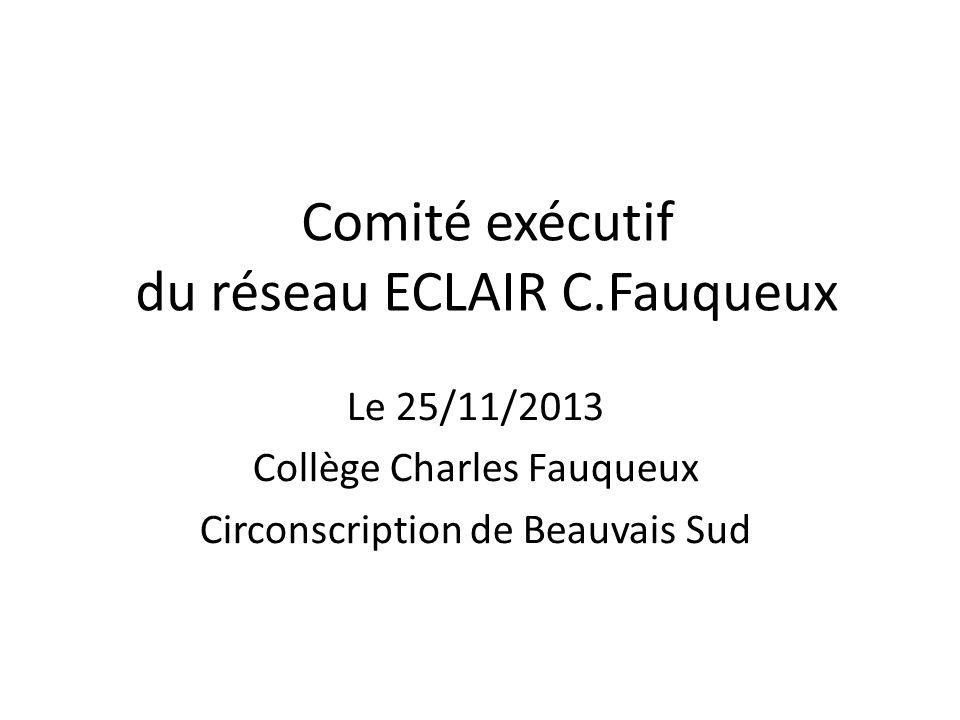 Comité exécutif du réseau ECLAIR C.Fauqueux