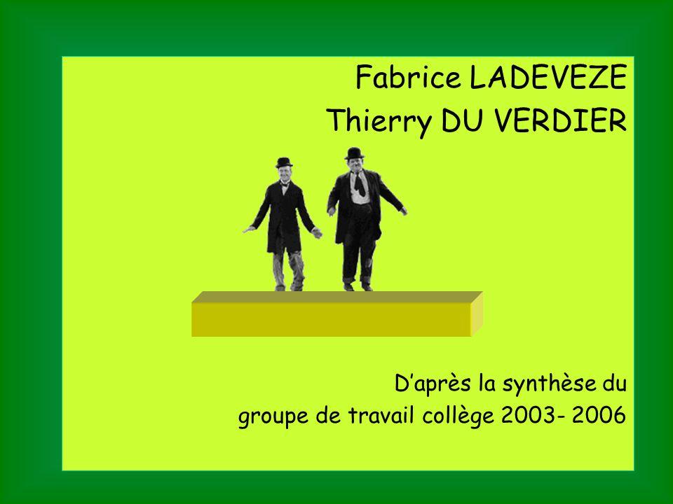 Fabrice LADEVEZE Thierry DU VERDIER D'après la synthèse du