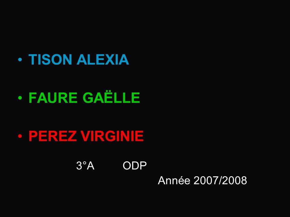 TISON ALEXIA FAURE GAËLLE PEREZ VIRGINIE 3°A ODP Année 2007/2008