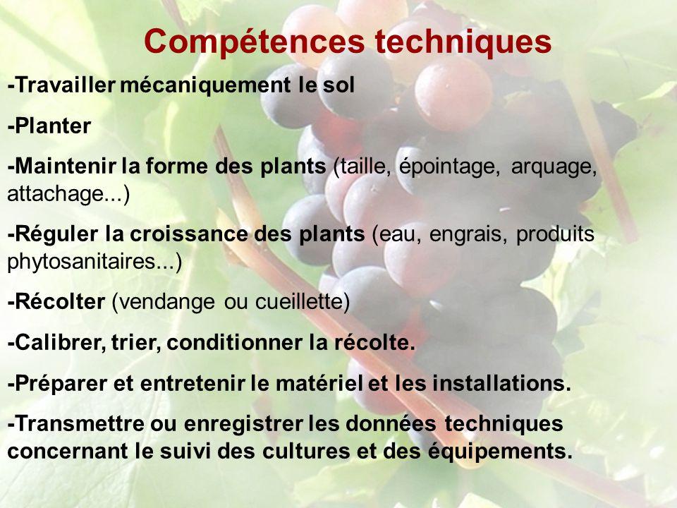 Compétences techniques