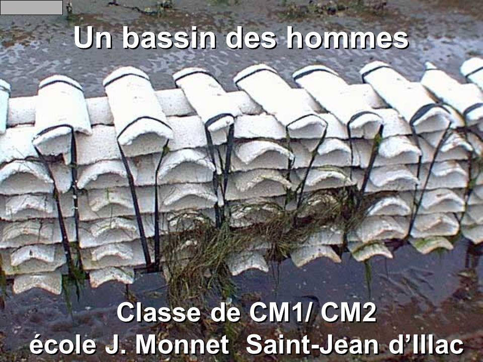 Classe de CM1/ CM2 école J. Monnet Saint-Jean d'Illac