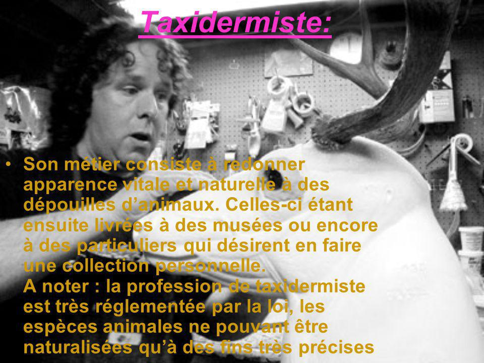 Taxidermiste: