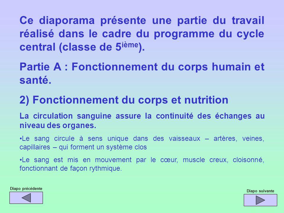 Partie A : Fonctionnement du corps humain et santé.