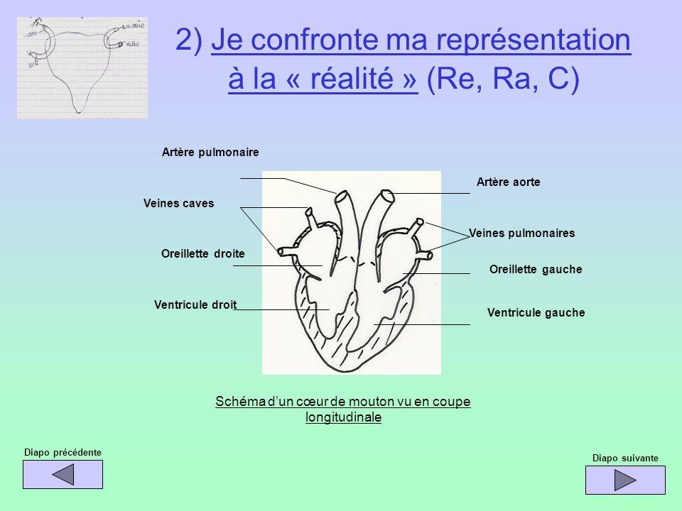 2) Je confronte ma représentation à la « réalité » (Re, Ra, C)