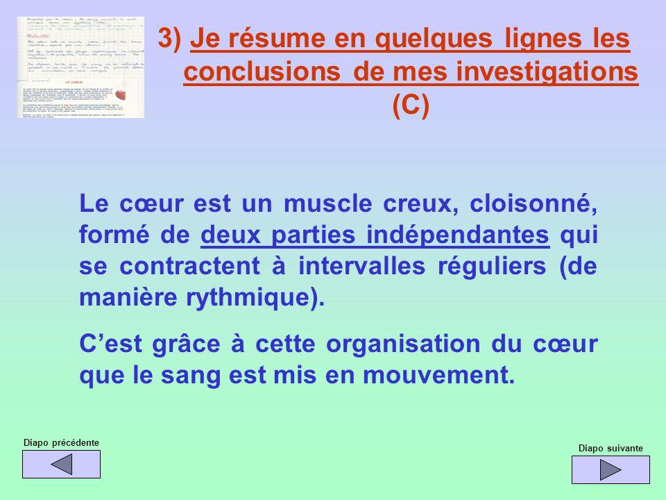 3) Je résume en quelques lignes les conclusions de mes investigations (C)