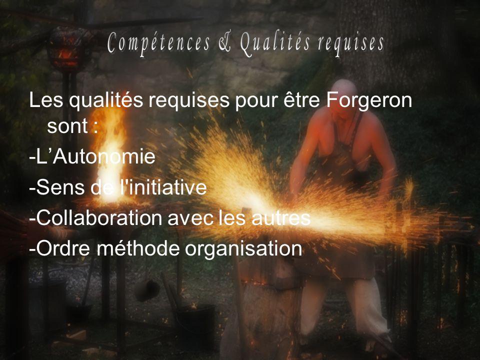 Compétences & Qualités requises