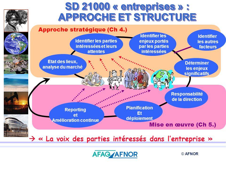 SD 21000 « entreprises » : APPROCHE ET STRUCTURE