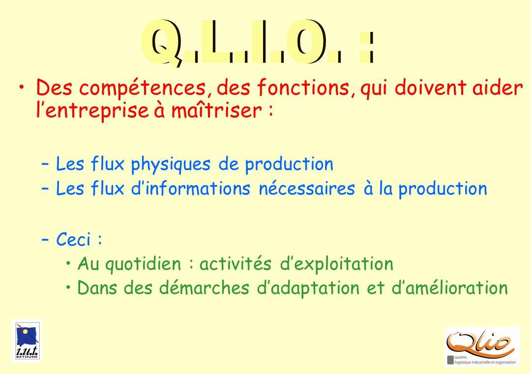 Q.L.I.O. : BILAN. Des compétences, des fonctions, qui doivent aider l'entreprise à maîtriser : Les flux physiques de production.