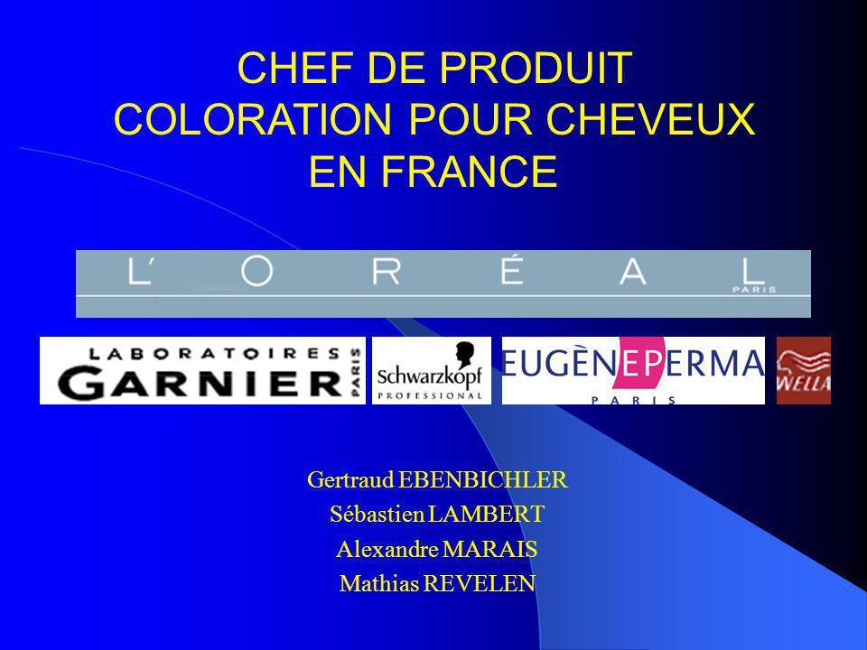 CHEF DE PRODUIT COLORATION POUR CHEVEUX EN FRANCE