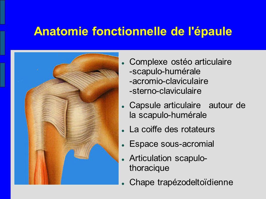 Anatomie fonctionnelle de l épaule