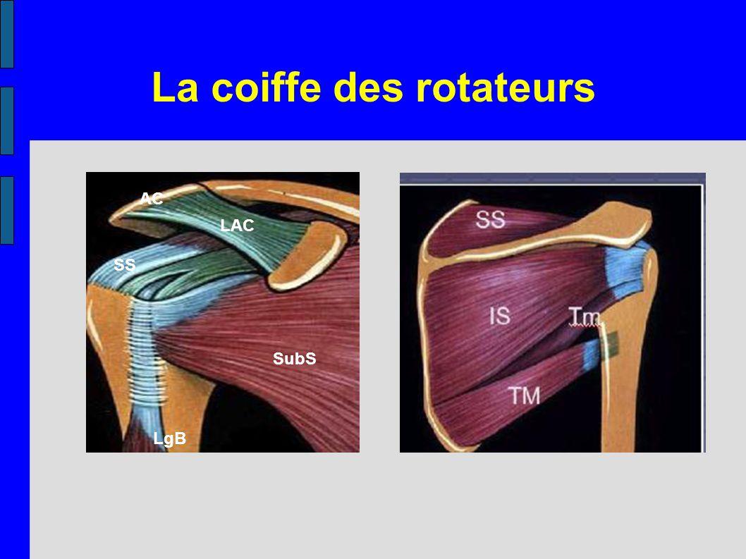 La coiffe des rotateurs