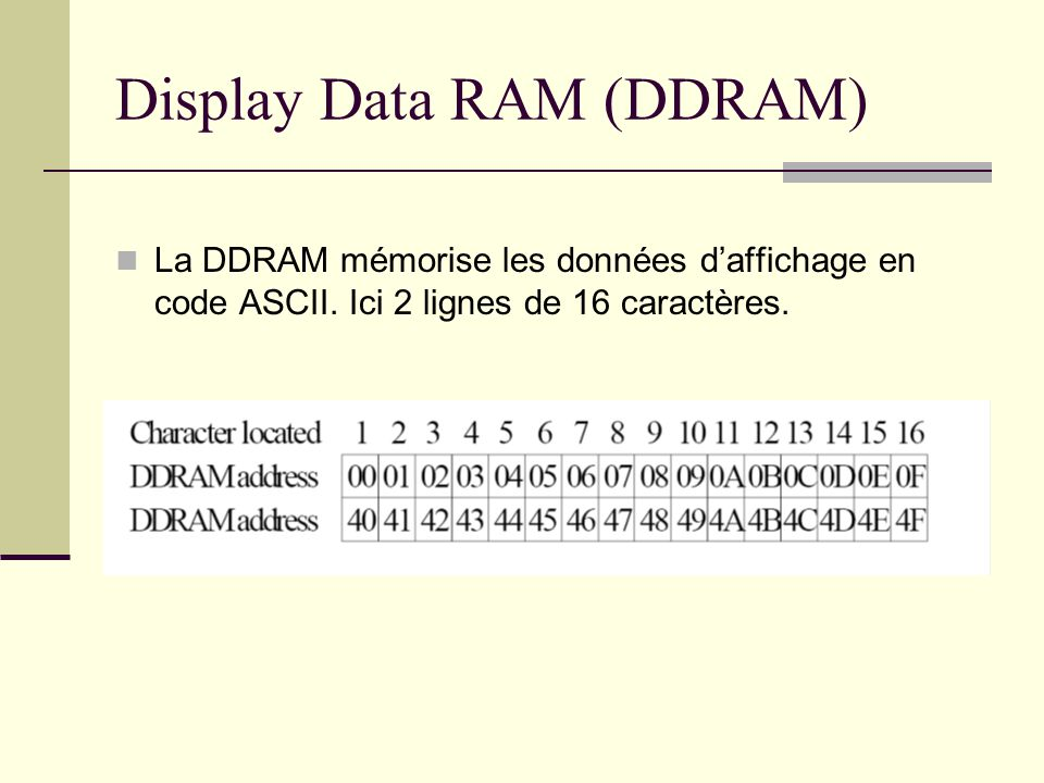 Display Data RAM (DDRAM)